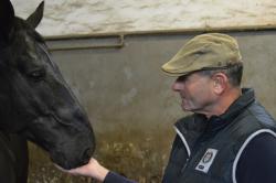 Nezastupitelná role policejního koně