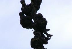 Fotosoutěž - vyhlášení osmého kola