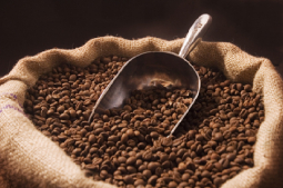 coffee-beans-medium-15174_pqhd-jpg.jpg