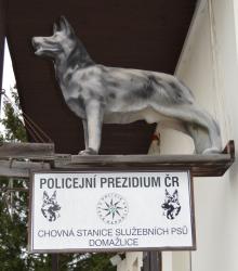 Policejní chovná stanice