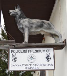 V chovné stanici Policie ČR vychovávají budoucí čtyřnohé strážce zákona