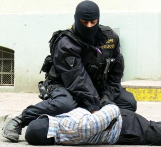 Očekávatelné násilí a odpovědnost policie