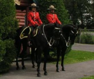 Jarka Jarvis: Dobrovolníkem u Kanadské Jízdní Policie II.