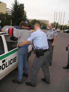 Společnost citlivá k násilí očima policisty